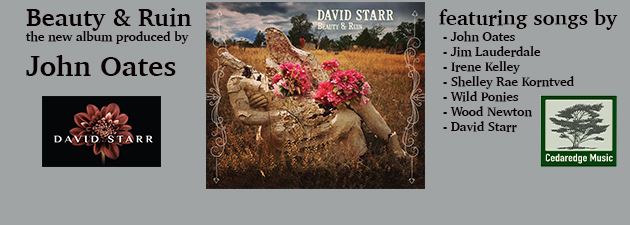DAVID STARR|Beauty & Ruin is my most deeply personal project yet!