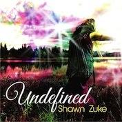 Shawn Zuke|Folk Rock/Fusion
