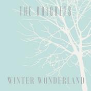 THE KRICKETS Holiday/Folk/Bluegrass